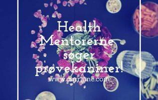 Health Mentorerne søger prøvekaniner d.