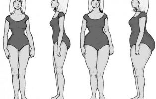 bodytypeg