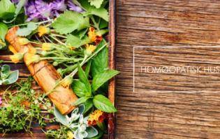 hormonboost nyhedsbrev header-4