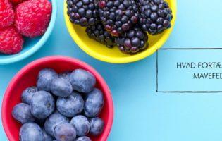Hvad fortæller dit mavefedt?