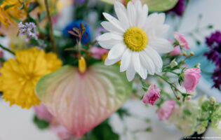 blomst-1-3